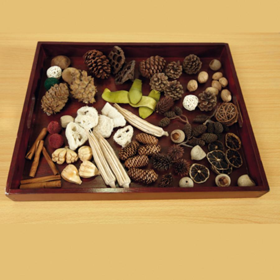 Buy Natural Wooden Sorting Tray Tts