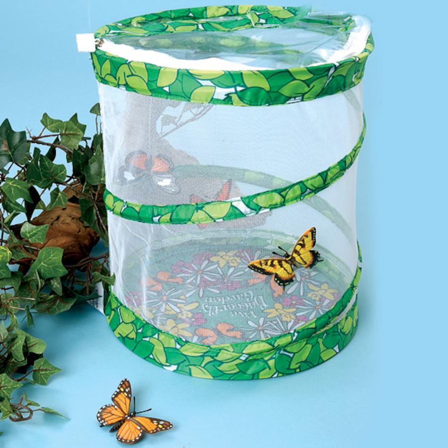 Buy Butterfly Garden Habitat Tts