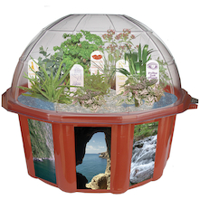 Sensory Garden Dome Planter  medium