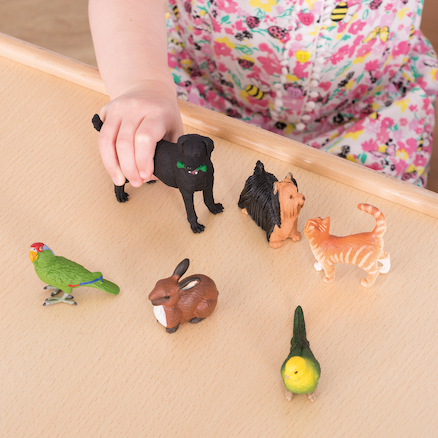 Pet Animal Set  large