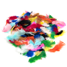 Brightly Coloured Feathers 28g  medium