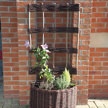 Willow Wall Planter  medium