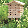 Solitary Bee Hive  small