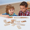 Metallic Matching Domino Set  small