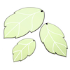 Leaf Shaped Whiteboards set of 3  small