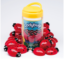 Ladybird Counters and Cards  medium