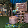 TTS Immersive Environment Enchanted Forest  small