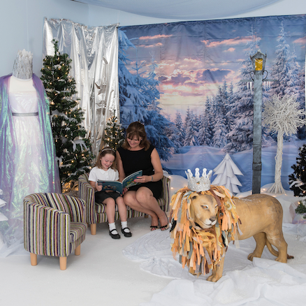 Immersive Environments Backdrops Frozen  large