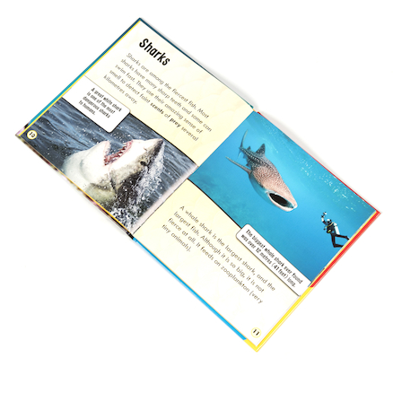 Animal Classification Books 6pk  large