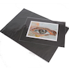 Pisces Presentation Display Sleeves 150micron A1  small