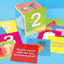 French Vocabulary Dice Insert Cards  medium