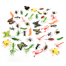 Minibeasts Pack  medium