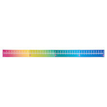 Giant Outdoor Rainbow Ruler L4m  medium