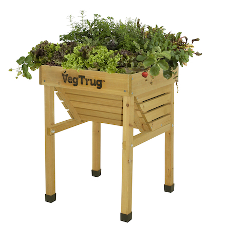 Veg Trug Kids Planter Natural Wood  large