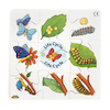 Wooden Life Cycle Jigsaws 4pk  small