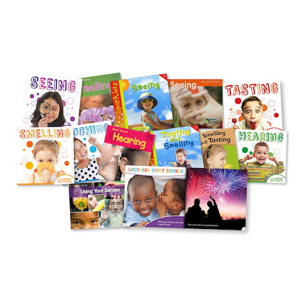 KS1 My Senses Books 12pk  large