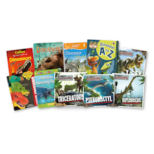 Amazing Dinosaurs Books  medium