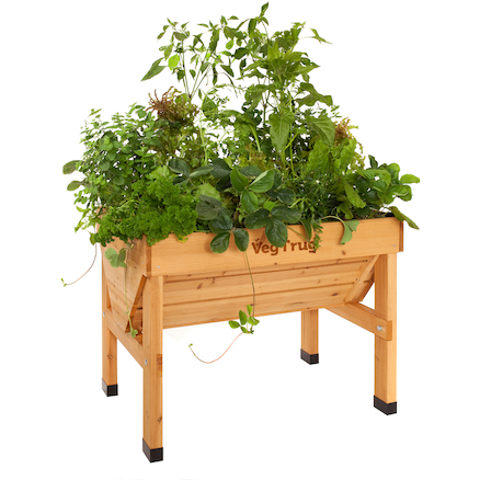 Veg Trug Planter Natural Wood  large