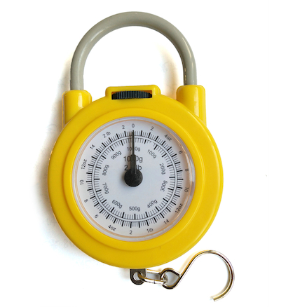 Calibrated Spring Weighing Scales 0\-1000g  large