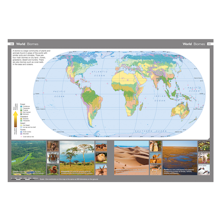 Collins Primary World Atlas  large