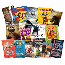 High Achieving Accelerated Reader Books 15pk  medium