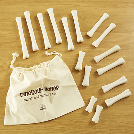 Dinosaur Bones Discovery Count and Size Set  large