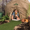 Immersive Environments Backdrops Woodland  small