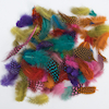 Assorted Freckled Feathers 28g  small