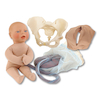 Realistic Childbirth Model Set  small