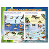 Animal Classification Playground Signboard  small
