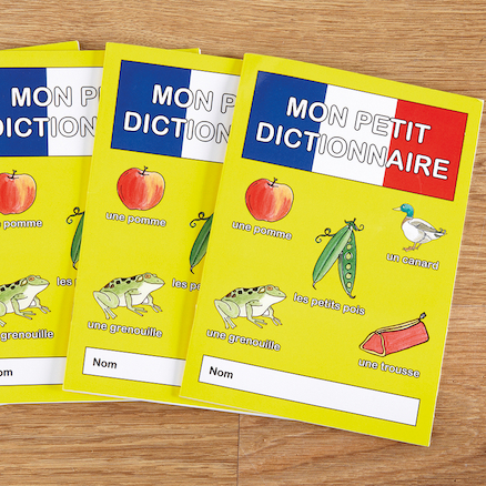 French Vocabulary Word Books 30pk  large