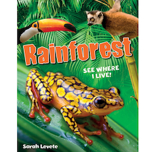 Jungle and Rainforest Books 3pk  medium