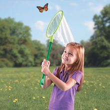 All In One Catch And View Butterfly Net  medium