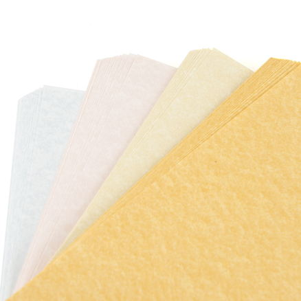 A4 Assorted Certificate Paper 100pk  large