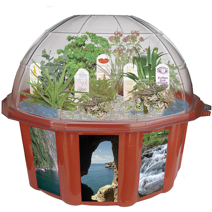 Grow Your Own Sensory Garden Dome  large