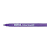 Berol\u00ae Colour Broad Fibre Tipped Assorted Pens  small