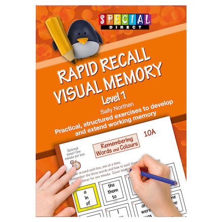 Rapid Recall Visual Memory  large