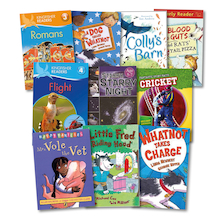 Level 10 White Book Band Booster Books 10pk  medium