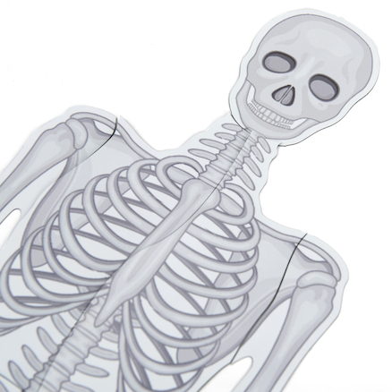 Magnetic Skeleton  large