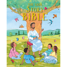 Illustrated Picture Bible  medium