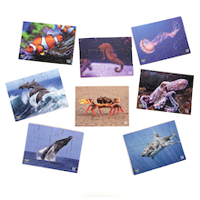 Photographic Sea Creatures Jigsaws  medium