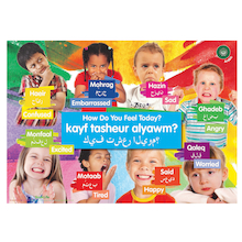 EAL My Feelings Posters 6pk  medium