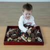 Natural Wooden Sorting Tray  small