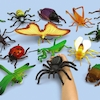 Small World Giant Bug Collection 24pcs  small