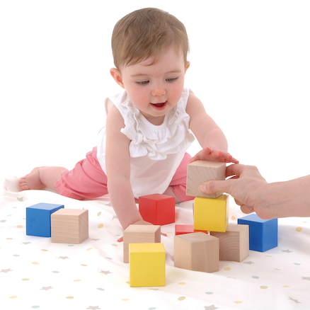 Baby First Wooden Bricks 12pk  large