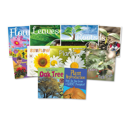 KS1 All About Plants Books 10pk  large