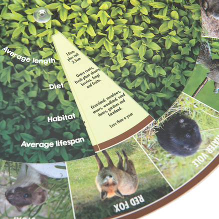 Mammals Identification Wheel  large