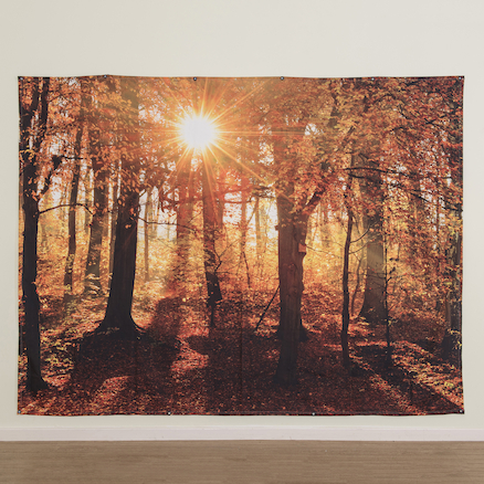 TTS Immersive Environments Backdrop Autumn Forest  large