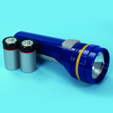 Handheld Torch With 2 D Type Batteries  large