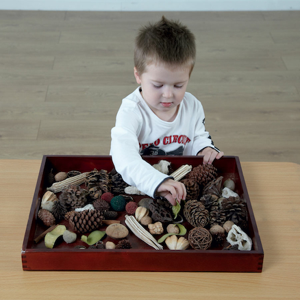 Natural Wooden Sorting Tray  large